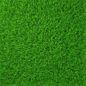 First Green 5-3-1